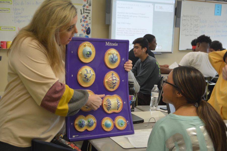 New Teacher Q & A with Hillary Schulze