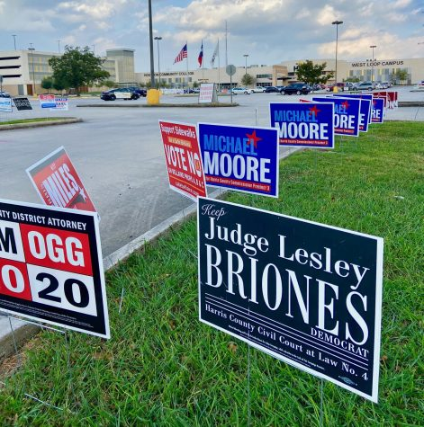 Campaign signs sit in front of the HCC Westloop Campus polling location.