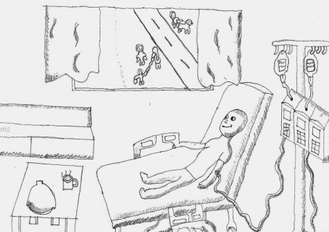 Panicker looks out the window from his hospital bed. He hopes that today will be the day that he gets to go outside.